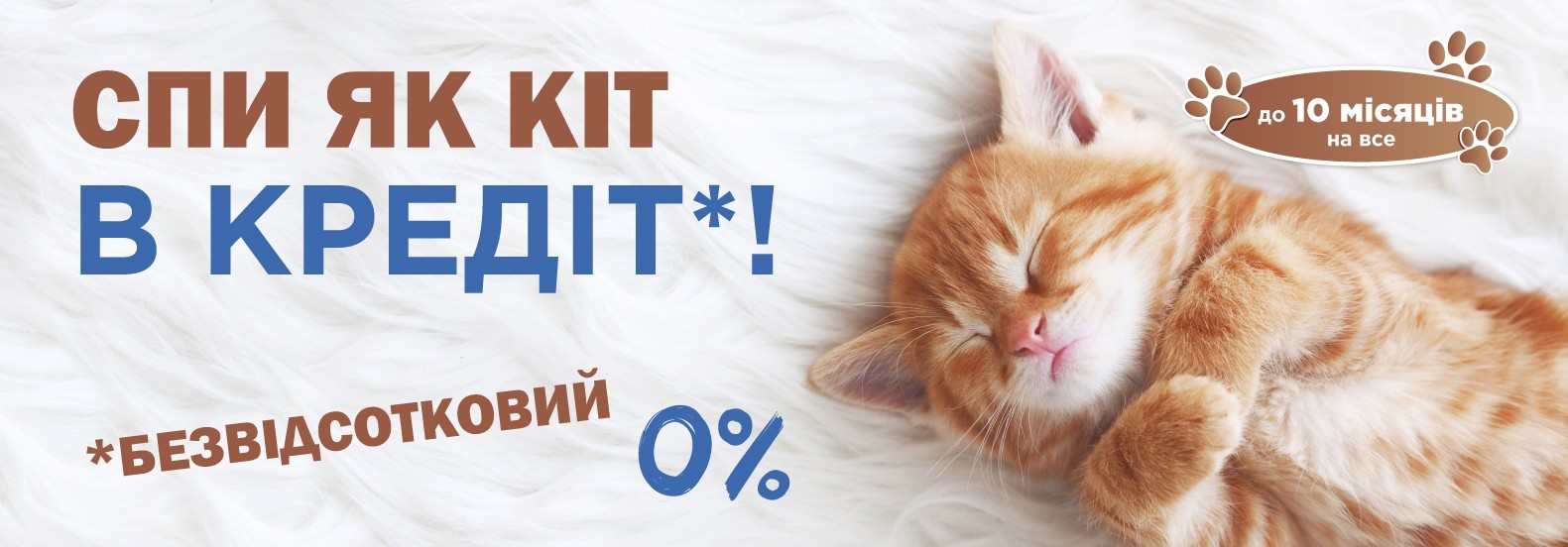 Спи як кіт в кредіт!